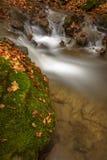 Detail des Herbstbaches mit Felsen und Blättern Stockbilder