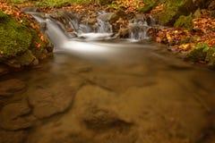 Detail des Herbstbaches mit Felsen und Blättern Lizenzfreies Stockfoto