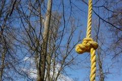 Detail des kletternden Rahmens des gelben Seils für Kinder und Erwachsene, wenn der Seilpark am sonnigen Tag geklettert wird stockbilder