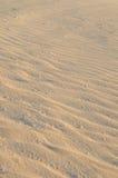 Detail des Sandes Stockbilder