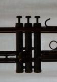 Detail des Schattenbildes der Trompete lizenzfreie stockbilder