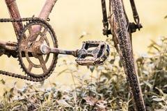 Detail des schmutzigen alten Fahrrades auf dem Reisgebiet Lizenzfreies Stockbild