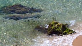 Detail des Strandes mit Felsen Langsame Bewegung stock video footage