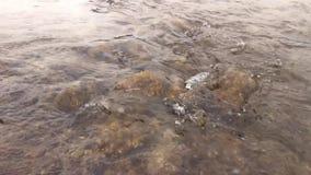 Detail des Wassers fließend über braune Steine in Fluss, grauer bewölkter Tag stock footage