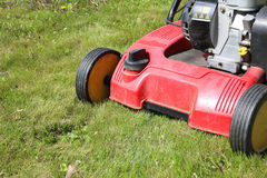 Detail of dethatcher, also known as lawn scarifier, working on m. Detail of dethatcher, also known as lawn scarifier -  device that removes thatch from lawns; on Royalty Free Stock Photography