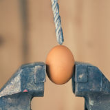Detail of Drill Aiming an Egg Fixed in Vice Royalty Free Stock Photos