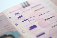 Detail of driving license Stock Photo