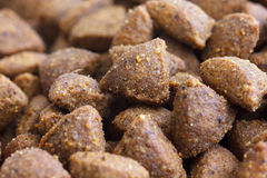 Detail of dry brown pet food. Stock Photography