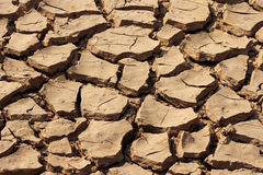 Detail dry cracked earth texture Stock Photo