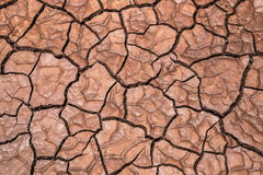 Detail dry cracked ground earth texture Stock Photo