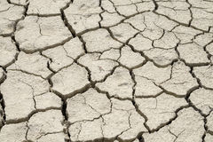 Detail of dry cracked soil texture Stock Images