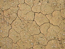 Detail of dry loam earth Stock Photos