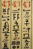 Detail of Egyptian hieroglyphic text on papyrus Royalty Free Stock Image