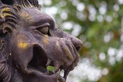 Detail einer berühmten Löwestatue auf unscharfem Hintergrund I stockfoto