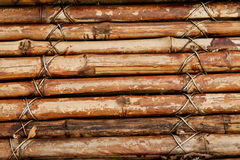 Detail eines Bambuszauns Stockfotografie