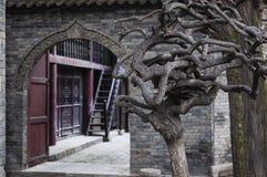 Detail eines Baums und der Eingang zur großen Moschee in der Stadt von Xian, Stockfotos