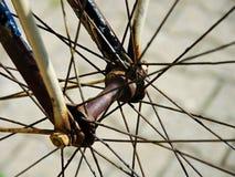 Detail eines Fahrrades Stockfoto