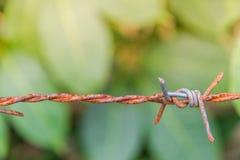 Detail eines rostigen Stacheldrahtzauns auf unscharfer Natur Stockbilder