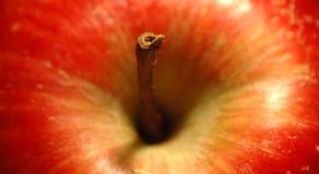 Detail eines roten Apfels lizenzfreie stockfotos