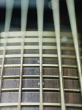 Detail of electric bass cords and frets Royalty Free Stock Photo