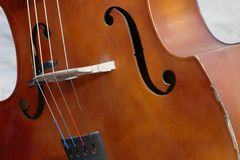 Detail of an elegant line of a violin stock photography