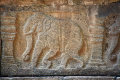 Detail of elephant on ruin at Polonnaruwa Royalty Free Stock Photography