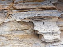 Detail of Eroded Sandstone Cliff Face, Sydney, Australia. Detail of textured Sydney sandstone cliff face, heavily eroded by wind and water, Sydney, NSW royalty free stock photography