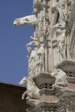 Detail of the facade of the Duomo of Siena Royalty Free Stock Photos