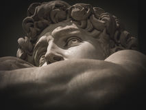 Detail of the face of Michelangelo`s David Royalty Free Stock Photo