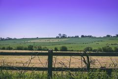 Detail of a fence with electrified wired on the Irish countryside. The detail of a fence with electrified wired on the Irish countryside stock photography