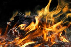 Detail fire blaze. On neutral background Royalty Free Stock Images