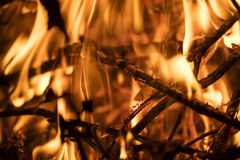 Detail on the fire with burning twigs, logs and leaves Stock Photos