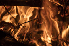 Detail on the fire with burning twigs, logs and leaves Stock Image