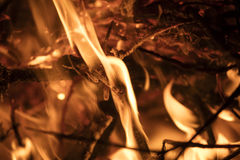 Detail on the fire with burning twigs, logs and leaves Royalty Free Stock Images