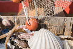 Detail of a fishing net and a white shell. Royalty Free Stock Photo