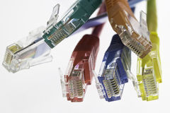 Detail of five network cables and a flat cable. Configuration on a white background Stock Image