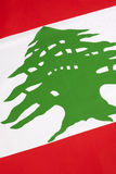 Detail on the flag of Lebanon Stock Image