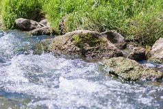 Fresh mountain stream flows down the mountain royalty free stock image