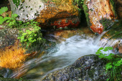 Detail of flowing water between the boulders Stock Photo