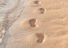 Detail of footprints on the sand beach Royalty Free Stock Photos