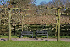 Detail of Formal gardens, winter time. Stock Photo