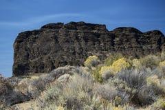 Detail, Fort Rock State Park, Central Oregon Stock Photo