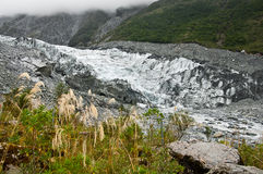 Detail of fox glacier Royalty Free Stock Photography