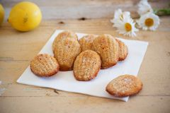 Detail of french sweet homemade pastry madeleines with lemon zest. Detail of french sweet homemade pastry dessert madeleines with lemon zest, next to lemons and Royalty Free Stock Image