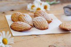 Detail of french sweet homemade pastry madeleines with lemon zest. Detail of french sweet homemade pastry dessert madeleines with lemon zest, next to lemons and Royalty Free Stock Photo