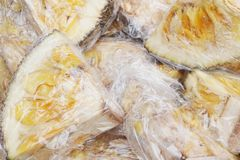 Detail of fresh jackfruit Royalty Free Stock Image