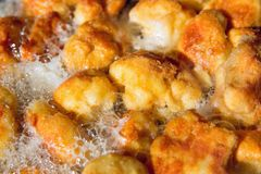 Detail on fried cauliflower Royalty Free Stock Photos