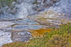 Detail of Frying pan lake in Waimangu geothermal park, New Zealand. Volcanic adventure in NZ royalty free stock photos