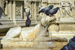 Detail of Gaia Fountain from Siena, Italy. Photo of the Gaia fountain from the Tuscan city of Siena, Italy Stock Images