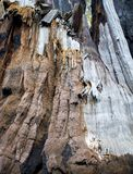 Detail Gebrande Californische sequoiaschors in Bruin Zwart Wit Beige met Peeli royalty-vrije stock fotografie